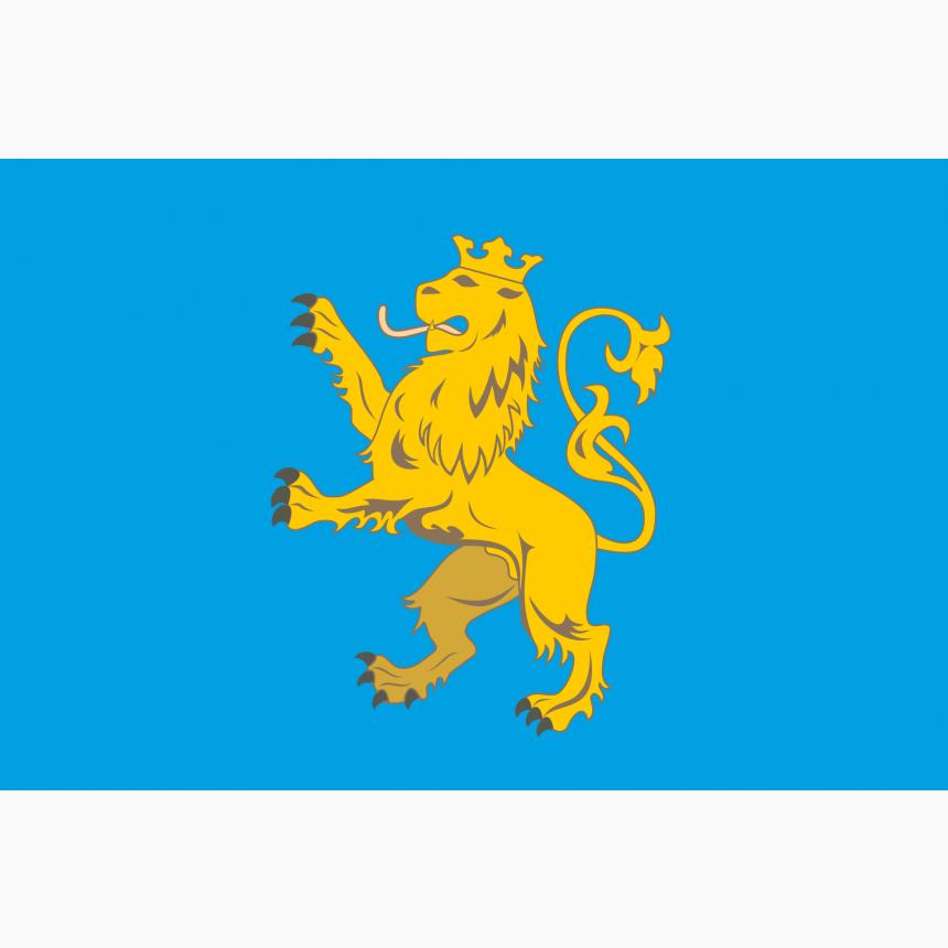 Флаг Львовской области